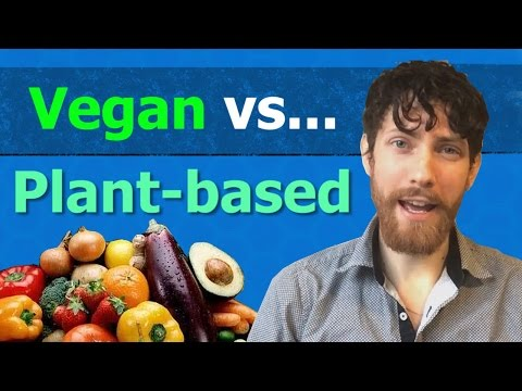 Vegan vs Plant-based