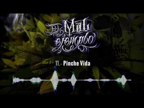 11.- Pinche Vida - Santa Grifa (El Mal Ejemplo VOL.3) HD