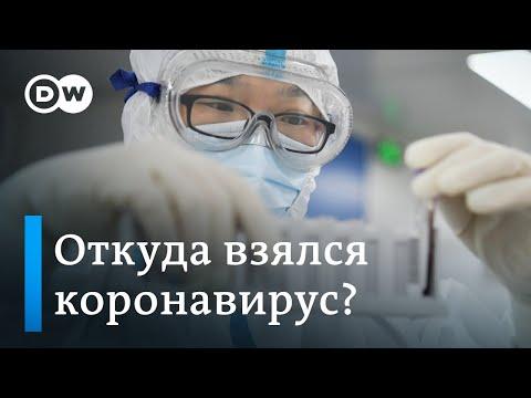 Откуда взялся коронавирус: Запад еще ждет ответов от Китая. DW Новости (29.04.2020)