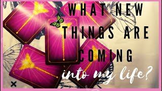 WHAT NEW THINGS AŔE COMING TO YOUR LIFE? (TIMELESS)