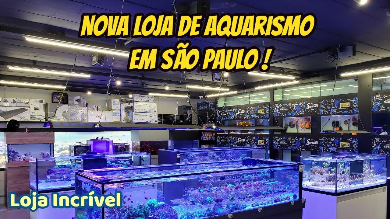 A mais nova loja de Aquarismo em São Paulo ! Conheça a Suricato Pets