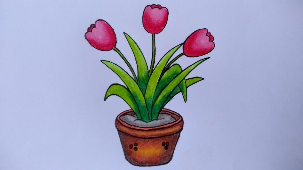 Menggambar Bunga Tulip Cara Menggambar Bunga Di Pot Youtube