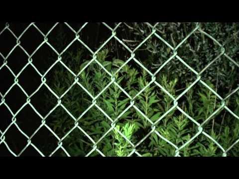 Mom - Tiny Fantasy (Official Music Video)