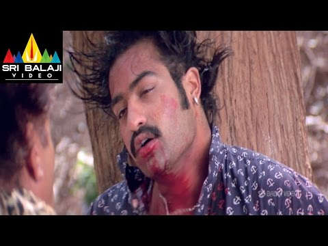 Yamadonga Movie Jr.NTR Climax Action Scene | Jr NTR, Priyamani, Mamta Mohandas | Sri Balaji Video