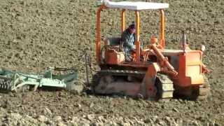 Trattori cingoli al lavoro con estirpatore dopo aratura con Fiat 70 e Fiat 88 New holland