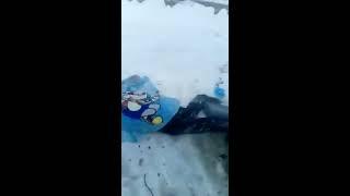 Водитель «КАМАЗа» погиб при столкновении с грузовиком в Татарстане