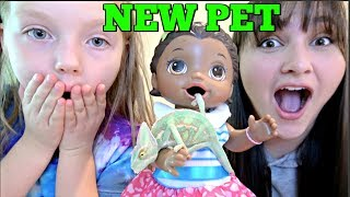 BABY ALIVE gets a NEW PET! LOL SURPRISE TOYS! The Lilly and Mommy Show! The TOYTASTIC Sisters