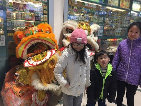 2018 Chinese New Year Lion Dance celebration at Pacific Mall, Markham.  Year of the Dog