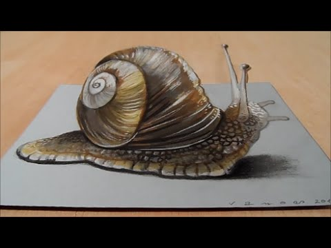 Drawing a 3D Snail, Three dimensional Space