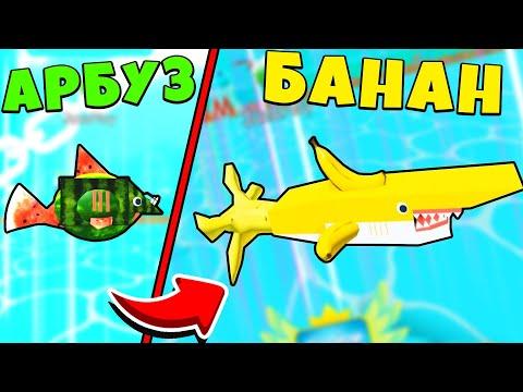 Вопрос: Заботливая shy акула – как называется, что о ней известно?
