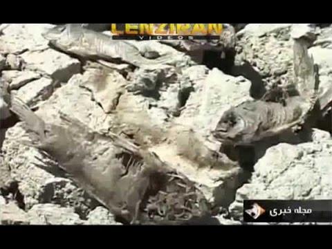 "Dead of ""Sarab Niloofar "" pond in in province of  ""Kermanshah  """