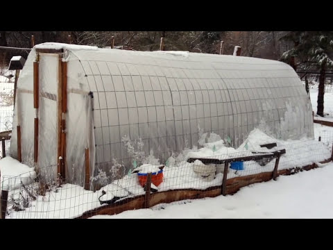 Winter Greenhouse  - $150 and works wonders!