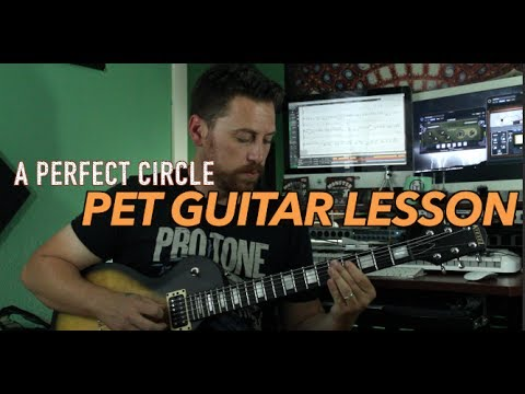 A Perfect Circle   Pet Guitar Lesson