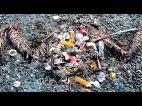 Charles Moore - the Great Pacific plastic trash island