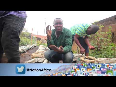 Notion Africa Presents Adesoji Saka (A Sack Farmer)