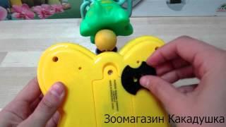 видео Игрушки для попугаев  - купить в зоомагазине Какадушка