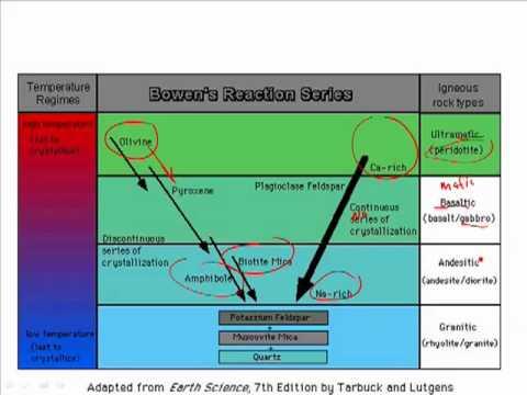 diagram of reaction enzyme mediated bowen's reaction series igneous 3 1 - youtube