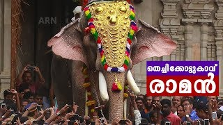 Thechikottukavu Ramachandran Entry at Thrissur Pooram 2019