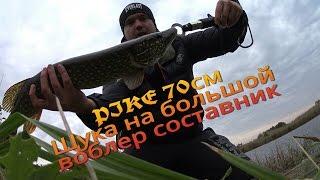 Щука 70см на большой воблер составник/Крупная приманка крупная рыба