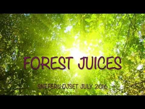 Sneferu - Forest Juices (DjSetJuly2016)