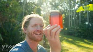 Meet the Flow Hive Hybrid- Honey on Tap & Fresh Honeycomb