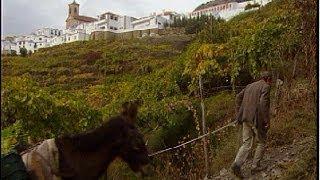 Ohanes, Almería, primer municipio ecológico de Europa (1999)
