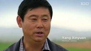 Lepsze żniwa. Chiny. // 100 years of CLAAS // www.100.claas.com