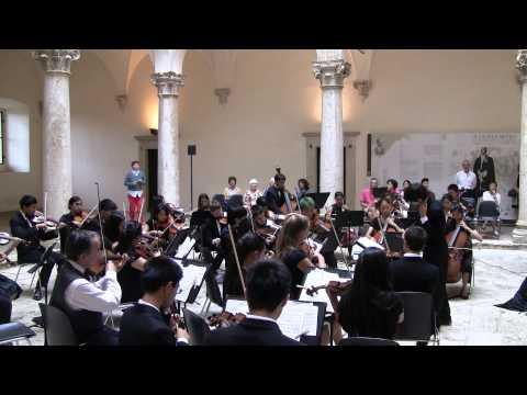 Donizetti Allegro for Strings