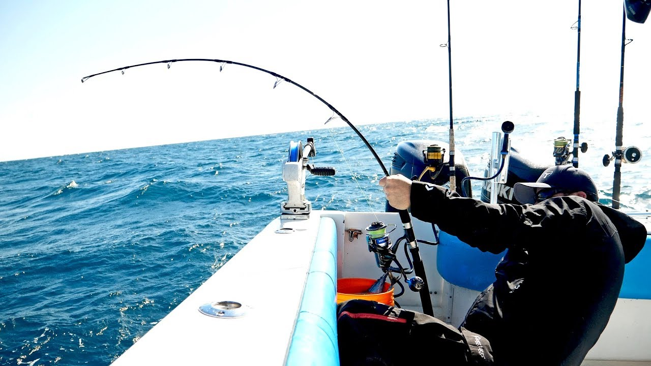 the-florida-cobia-fishing-challenge-4k