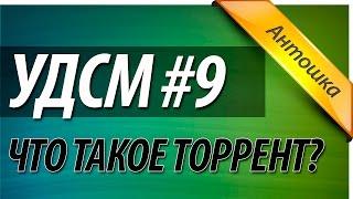 УДСМ #9 - Как скачать, установить, пользоваться uTorrent (торрент)