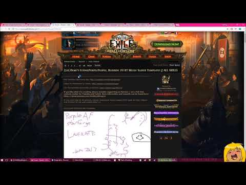 3.1 Path of Exile Build Starter Build Guides and Resources   Demi 'Splains