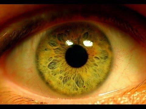 Витамины для глаз при близорукости. Наиболее эффективные