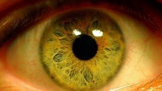 видео Витамины для зрения