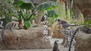 神戸どうぶつ王国 の2017年春のCM ペリカンラグーンリニューアル&スナド...