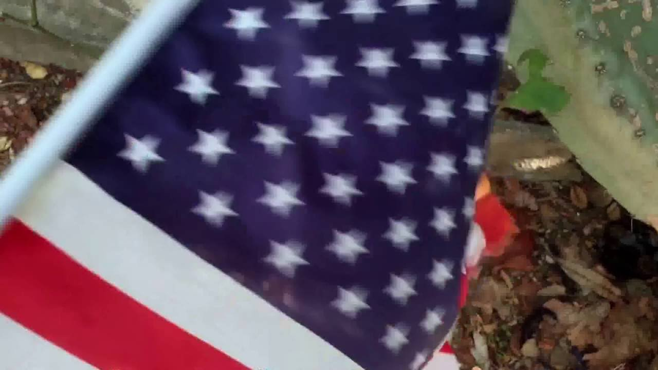 THE AMERICAN FLAG:  A Projection Poem by Ishmael von Heidrick-Barnes