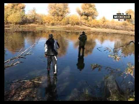 Река Волга природа, рыбалка, отдых и экология, фото и карта