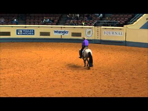 VS FLATLINE - World Champion in Two Year Old Western Pleasure
