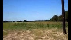 Land For Sale In Van Zandt County Texas, Wills Point