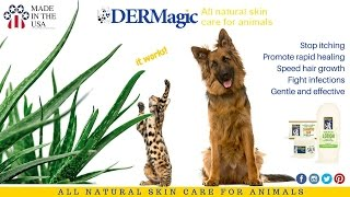 Natural solution to Dog and Cat Skin Problems - DERMagic Skin Care for Animals