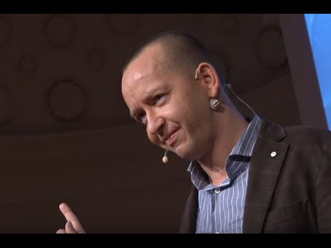 The Global Grid for Empowering Renewable Energy | Damien Ernst | TEDxLiège