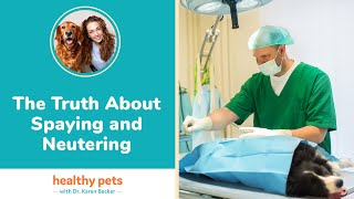 Dr. Becker: The Truth About Spaying and Neutering