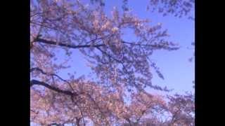 Учим песни Шри Чинмоя - Nirabatar Dak Eseche (music by Sri Chinmoy)