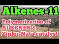 Polymerization of Alkenes|Alkene-11|