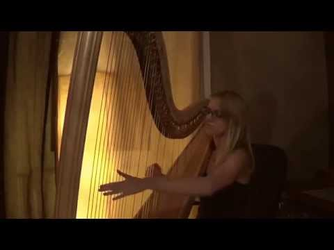 The Theory of Everything /The Cinematic Orchestra - Arrival of the birds (harp cover)