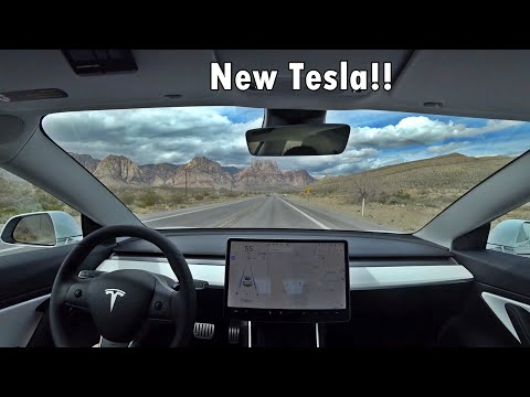 I Bought A Model 3 Performance! :D