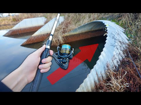 Fishing In GIANT POND TUNNELS!! (Surprise Catch)