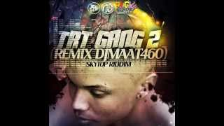 TRT GANG 2 - Remix 2015 ( DjMaat460 - Skytop Riddim ) - EXCLUS PLC PRODUCTION
