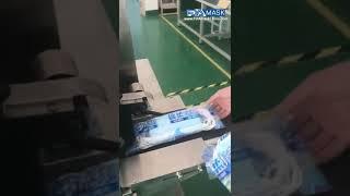 마스크 팩 20 장 수평 급지 베개 봉투 플로우 포장기