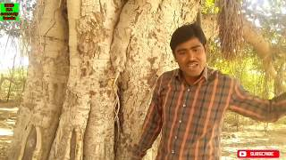 mosar मोसर new rajasthani haryanvi comedy movie    rajasthani movie   rajasthani comedy