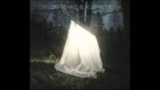 Cats On Fire - A Few Empty Waves